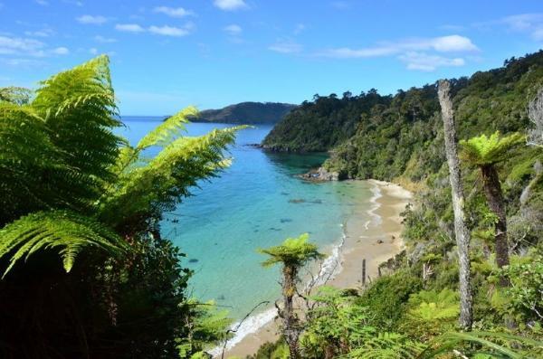Stewart Island Walking Tour