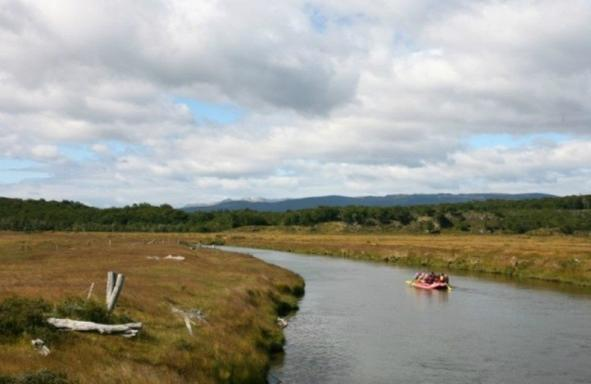 Gable Island & Penguin Colony Day Trip W/ Optional Kayaking