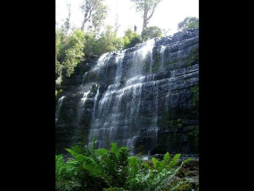 Russell Falls Tour