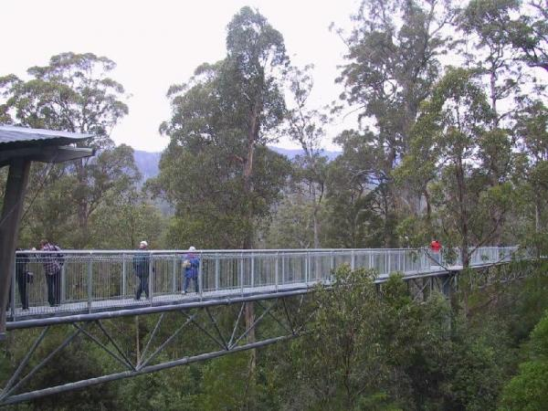 Huon Valley Day Tour