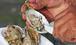 Toronto Oyster Shucking Class