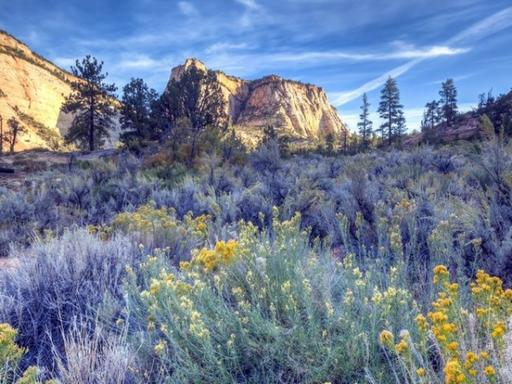 9-Day Yellowstone, Arches National Park, Antelope Canyon, Zion National Park and Grand Canyon West Rim Tour