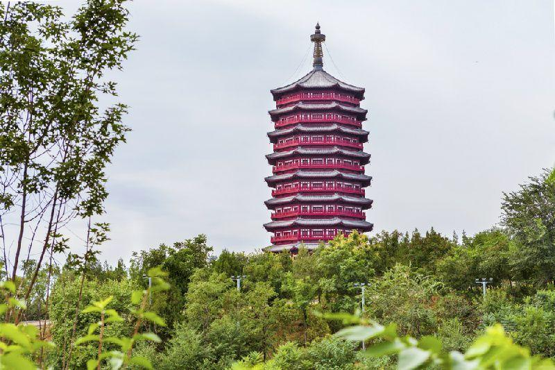 Hangzhou Day Tour w/ West Lake Cruise