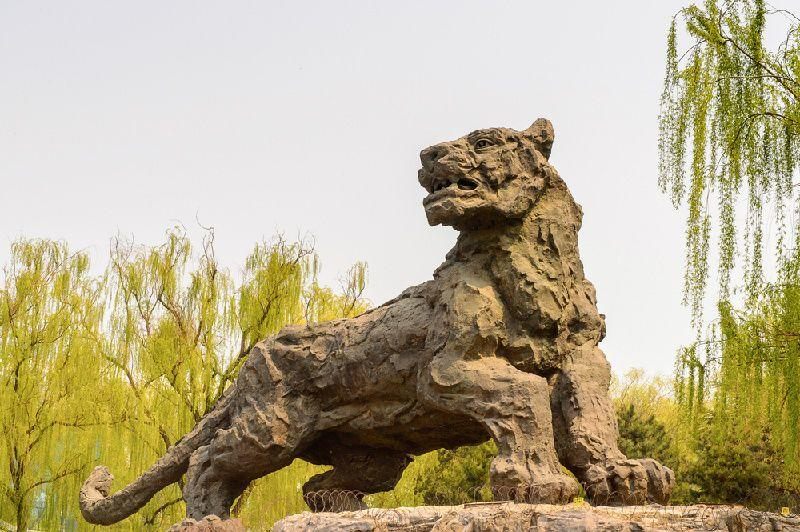 Beijing Day Tour: Beijing Zoo, Summer Palace and Yonghe Temple
