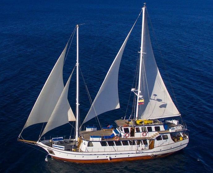 Cachalote Yacht - Galapagos Cruise