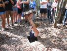 Ho Chi Minh City Tour W/ Cu Chi Tunnels