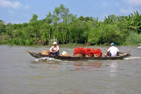 Mekong Delta Cruise w/ Cooking Class and Cai Be Floating Market Tour