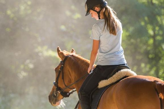 Shared Cuenca Horseback Riding