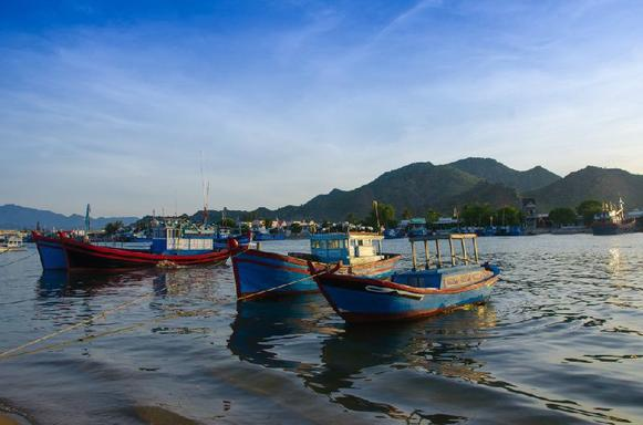Cham Island Tour From Hoi An