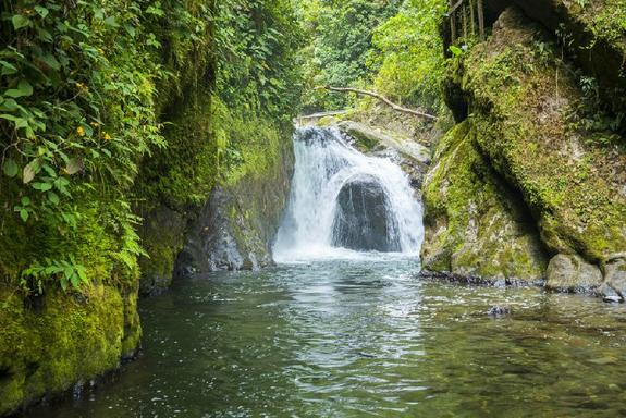 2-Day Private Mindo Cloud Forest Tour