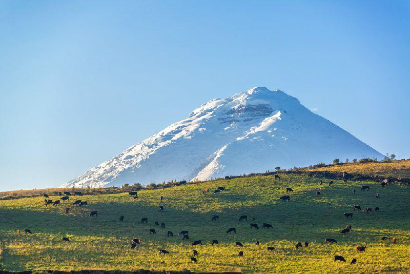 2-Day Private Devil's Nose Train and Avenue of Volcanoes Tour
