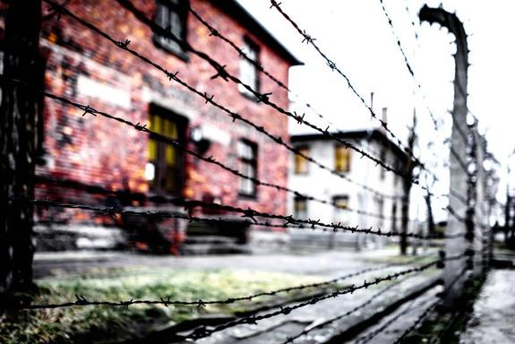 Auschwitz Birkenau Day Tour from Krakow