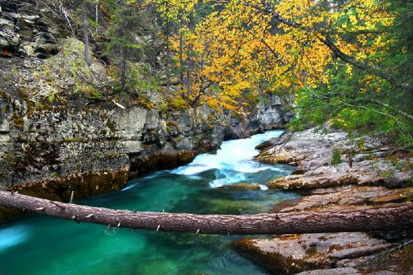 2-Day Jasper National Park Tour From Calgary