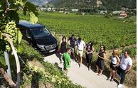 Wachau Valley Small Group Tour from Vienna**2 Wine Tastings -- Max 8 Guests per Departure**