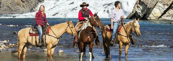 Sulphur Mountain Horse Riding Tour