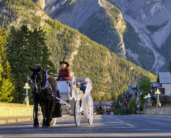 Private Downtown Banff Horse-Drawn Carriage Ride