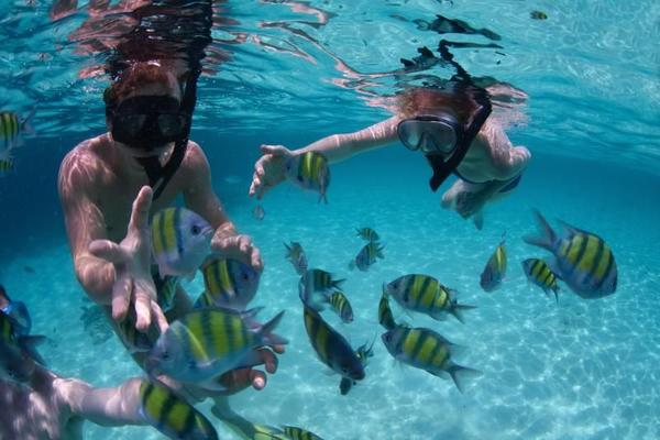 Angthong Marine Park Speed Boat and Snorkeling Adventure w/ Lunch