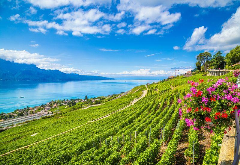 8-Day France and Switzerland In-Depth Holiday Package