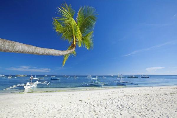 5-Day Cebu & Bohol Adventure Tour
