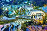 6-Day Yunnan Photography Tour: Kunming - Jianshui - Yuanyang