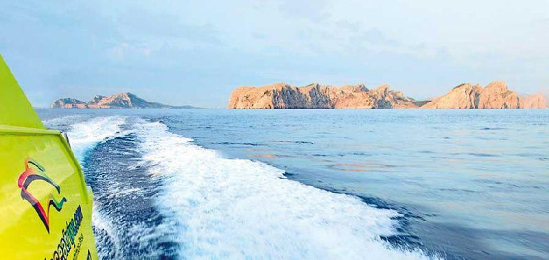 Alcudia Dolphin Watching and Sunrise Cruise