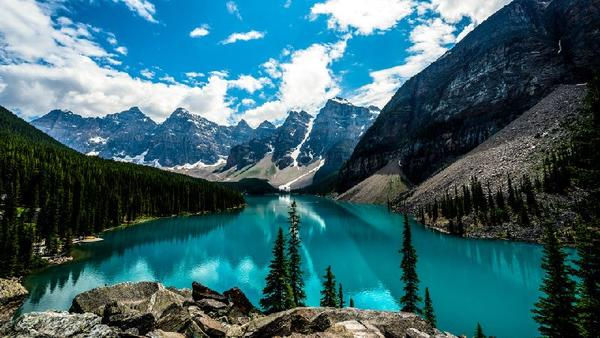 11-Day Canadian Rockies & Yellowstone Tour