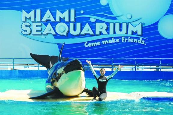 Miami Seaquarium Ticket & Transfer