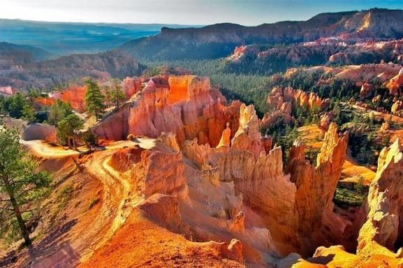 11-Day West Coast Tour From San Francisco: Yellowstone, Antelope, Zion, Bryce & Grand Canyon W/ 2 California Theme Parks