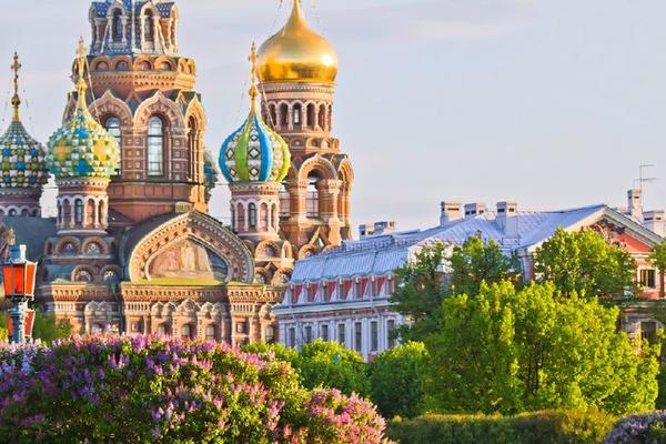 Half-Day Panoramic Saint Petersburg City Tour
