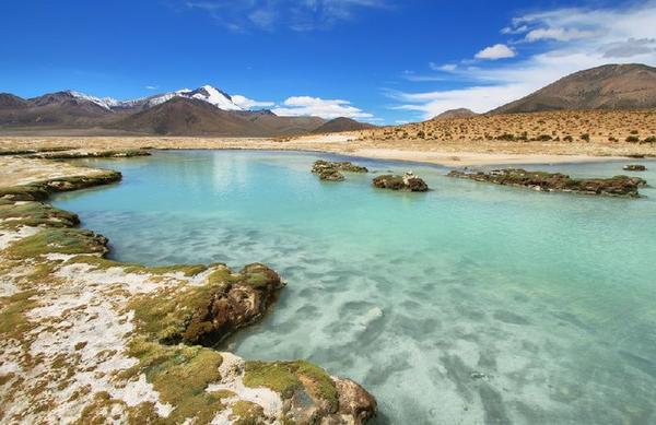 4-Day Private Northern Chile Tour W/ Arica & Putre - Sea View Room