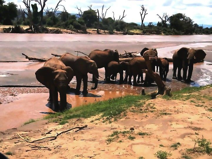 3-Day Kruger National Park Classic Safari Package