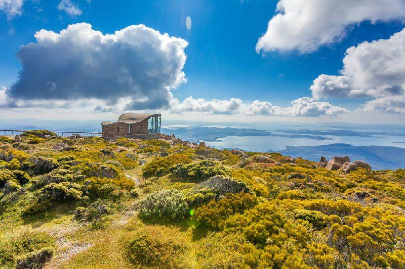Mount Wellington Descent Bike Tour