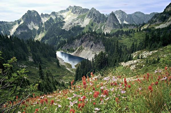 3-Day Mt. Rainier and Seattle Tour
