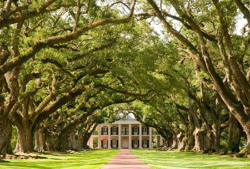 3-Day Houston & New Orleans Tour: Oak Alley Plantation & NASA Space Center