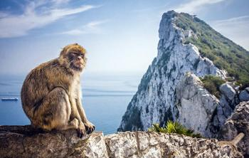 Private Gibraltar and Bolonia Day Trip from Cadiz