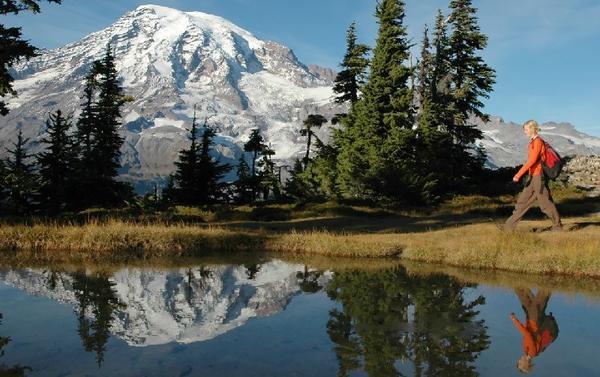 Mt Rainier Tour From Seattle**Max 10 Guests Per Tour**<br>** All-Inclusive**