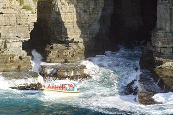 3-Hour Morning Tasman Island Cruise