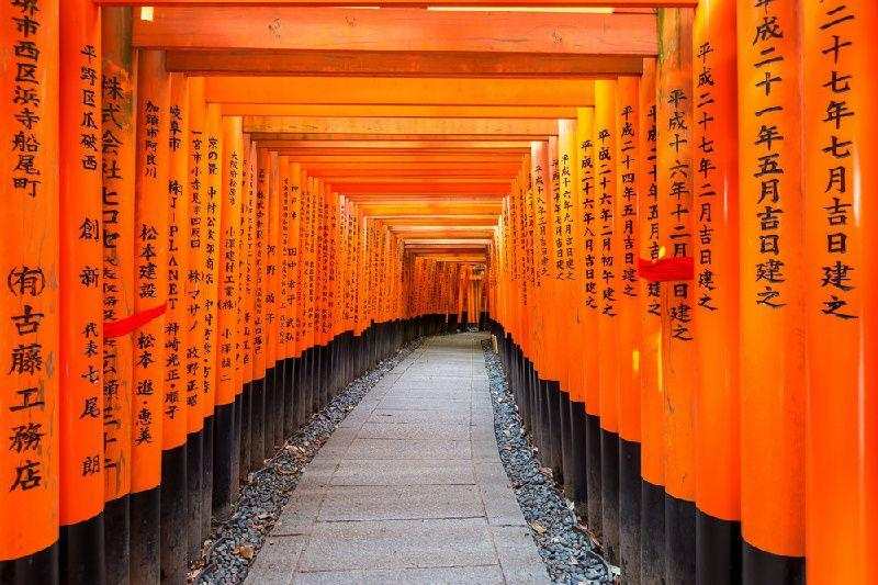 8-Day Japan Fall Foliage Tour From Tokyo to Kyoto