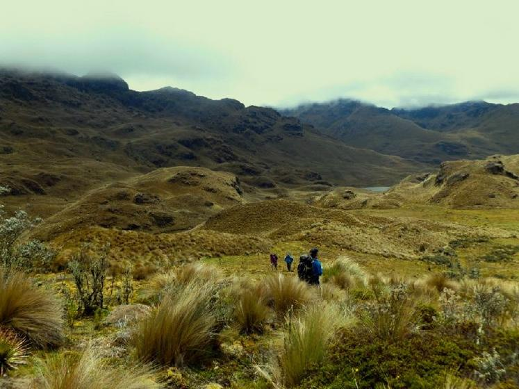 2-Day Cajas National Park Camping Tour