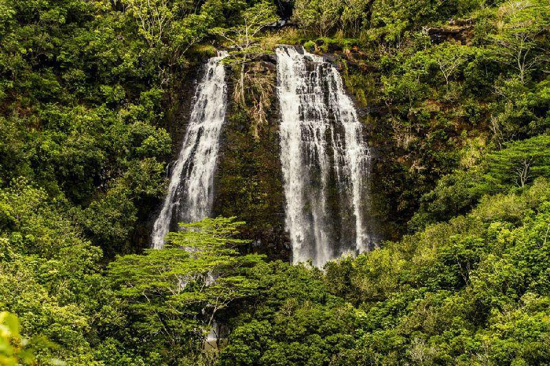 Kauai Tour & Roundtrip Flight From Honolulu: Waimea Canyon and Fern Grotto
