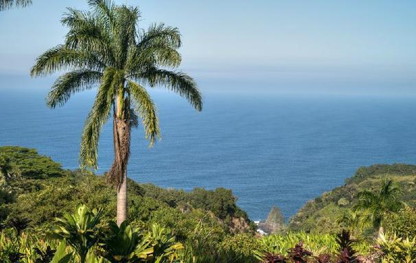 Heavenly Hana Tour & Roundtrip Flight From Honolulu