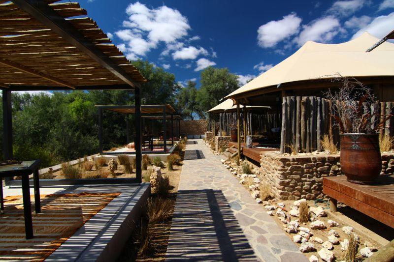 2-Day Inverdoorn Kuganha Safari W/ Private Transfer From Cape Town
