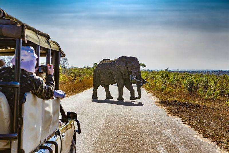 3-Day Kruger National Park Safari at Shukuza Camp