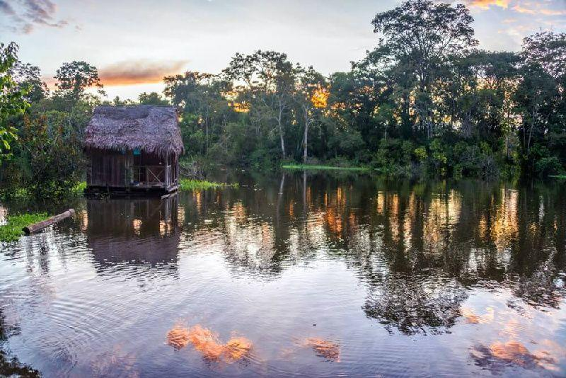 2-Day Amazon River Lodge Package From Manaus