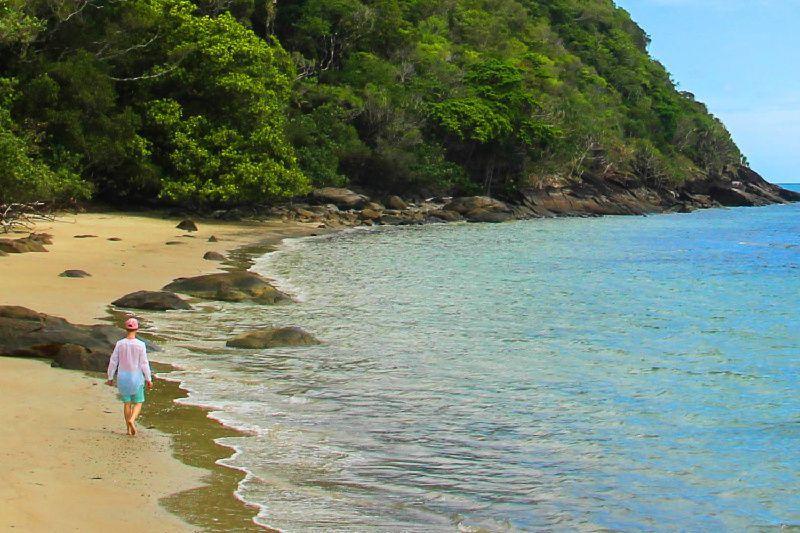 Cape Tribulation & Daintree Rainforest Adventure Tour