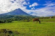 5-Day Private Tour - A Taste of Costa Rica