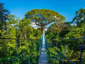 4-Day Puerto Maldonado Jungle Tour