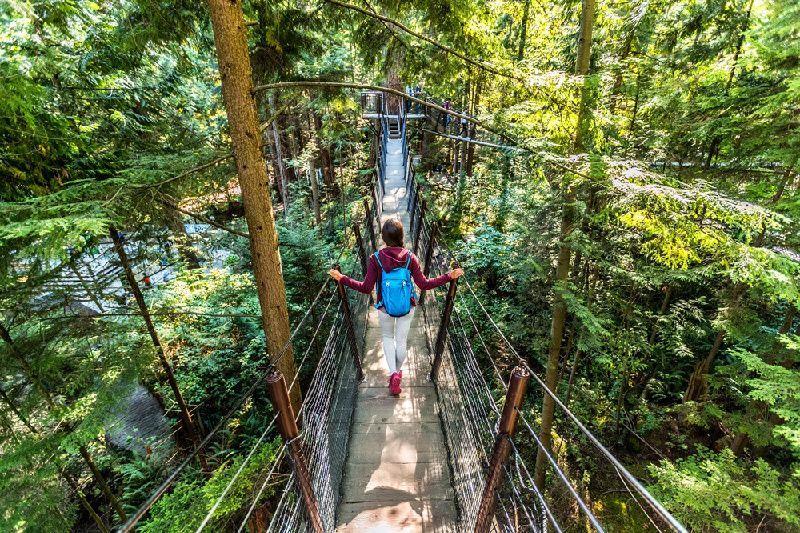 Vancouver City Tour W/ Capilano Suspension Bridge