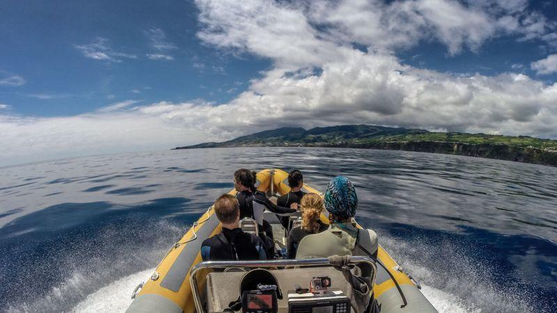 Azores Swimming with Dolphins and Snorkeling Tour