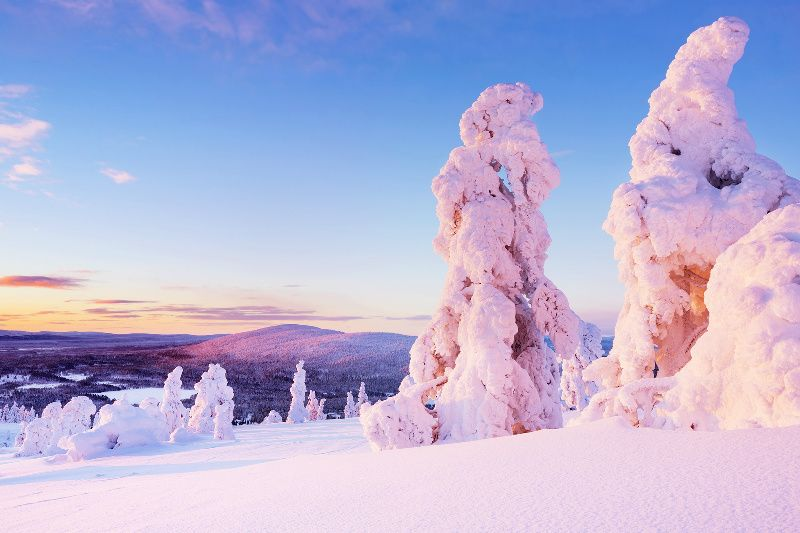 6-Day Lapland Holiday at Levi Ski Resort**Break Sokos Hotel Levi || Day Trip to Santa Claus Village in Rovaniemi**
